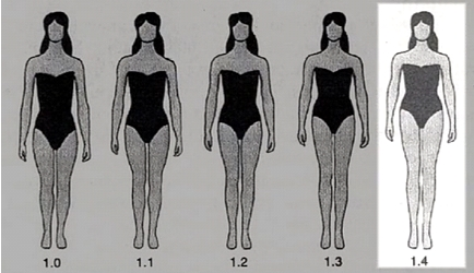rapport-taille-jambes-femmes