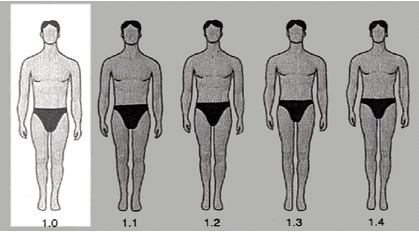 rapport-taille-jambes-hommes