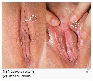 Sucer le clitoris